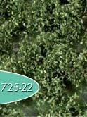 Unkrautbüschel (Sommer)