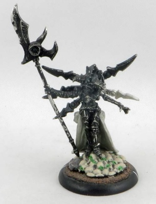 WARMACHINE: Cryx Wraith Witch Deneghra (1)