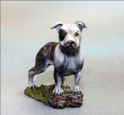 Pitbull Dog (2)