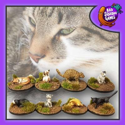 Kitties (8)