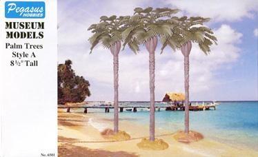 Kleine Palmen  A (3)