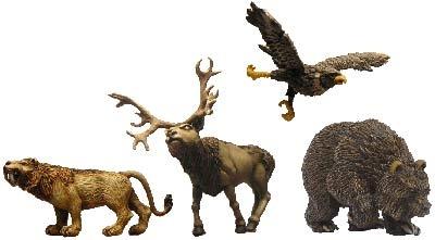 Wilde Tiere (4)