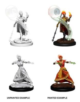 D&D: Fire Genasi Female Wizard (2)