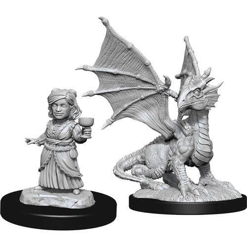 Silver Dragon Wyrmling & Female Halfling