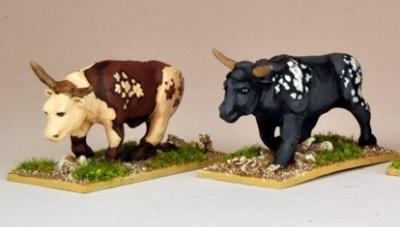 Oxen (2)
