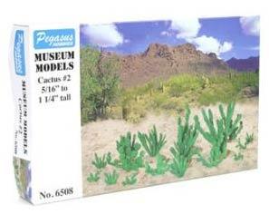 Kaktus Set B