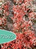 Blütenbüschel (Sommer)