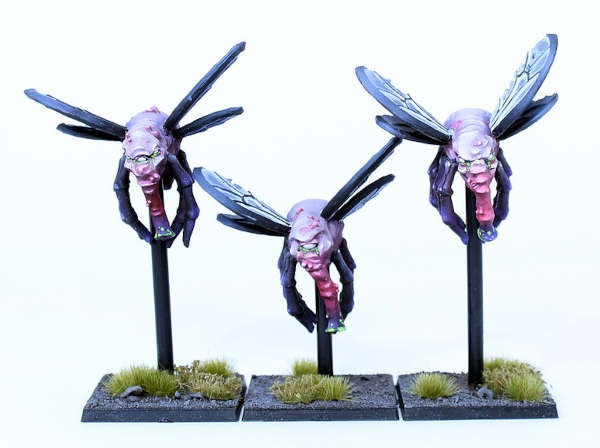 Pest flies (3)