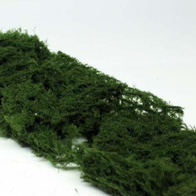 Bodendecker immergrün (hell)