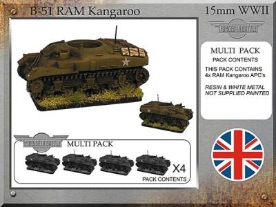 Britsh RAM Kangaroo (4)