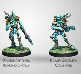 Kaauri Sentinels (Combi Rifle/ B. Shotgun) (TOH)