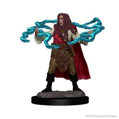 D&D: Human Male Sorcerer (2)