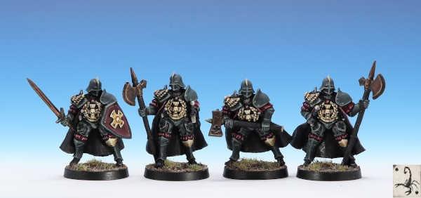 City Guard of the Knights Citadel