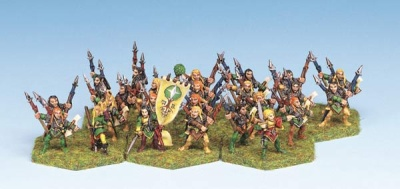 Wood Elf Heavy Infantry (24)