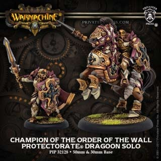 Protectorate Champion of the Order of the Wall Solo