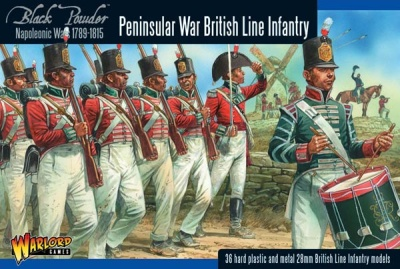 Napoleonic British Line Infantry (Peninsular War) (36)