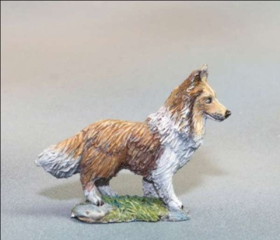 Sheltie Dog (2)