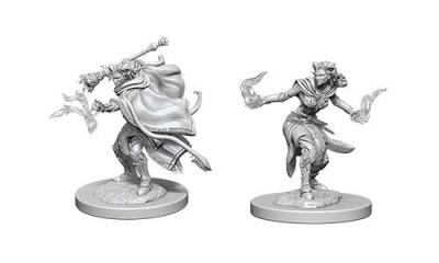 D&D: Female Tiefling Warlock (2)