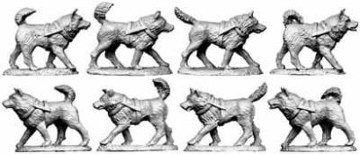 Husky Team (8)