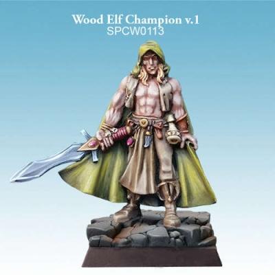 Wood Elf Champion v.1