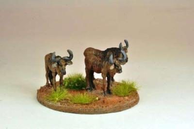 Gnu/ Wildebeest (5)