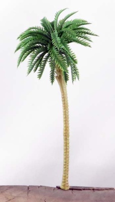 Palmen 10cm (10)
