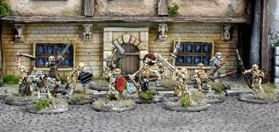 Blight Haven Skeleton Warband (12)
