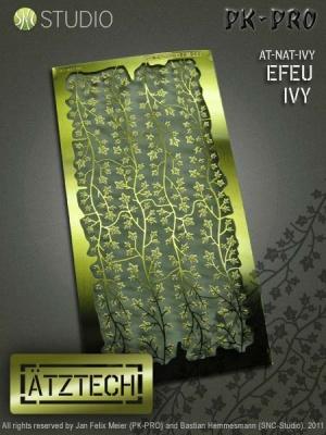 Ätztech Efeuranken