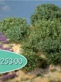 Rhododendron (grün)