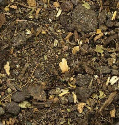 Ground Base - Dark Brown
