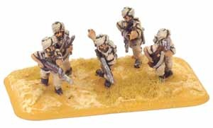 Rifle Platoon (Indian)