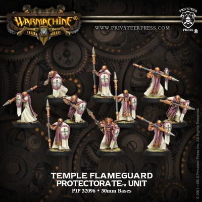 Protectorate Temple Flameguard (10) Unit Box