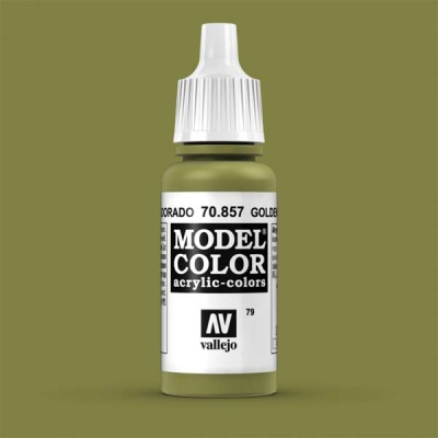 Model Color 079 Goldoliv (Golden Olive) (857)