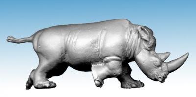 Charging Rhino (1)