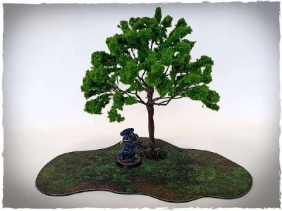 Model trees - 32 mm scale, elm