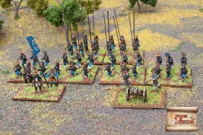 Swedish Infantry