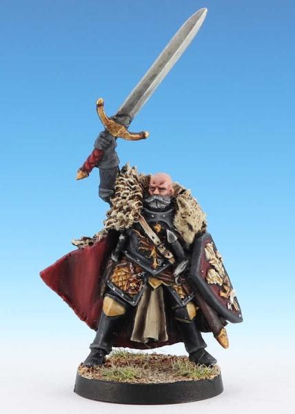 Grand Master of the Knights Citadel