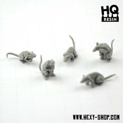 Giant Rats (5)