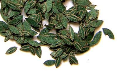 Laub: Kirschenblätter grün (1:35)