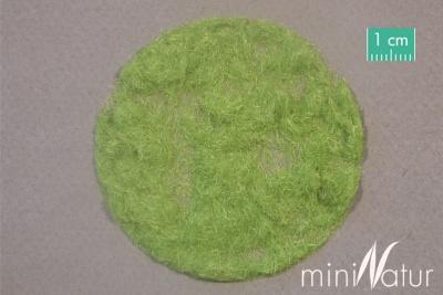 Grasflock (Frühling) 2mm (50g)