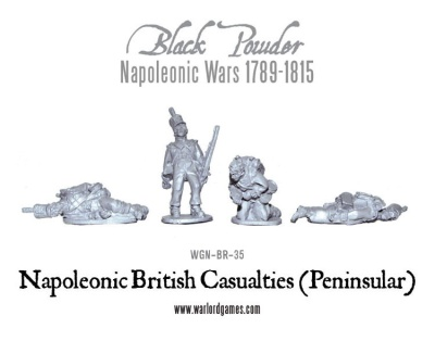 Napoleonic British Casualties (Peninsular) (12)