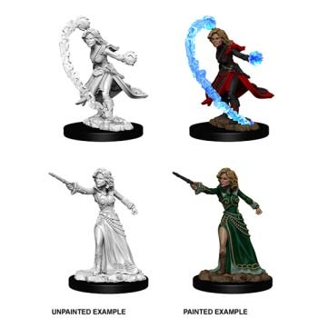 D&D: Female Human Wizard (2)