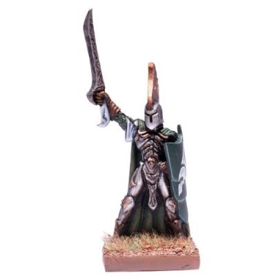 Elf Palace Guard Prince (1)