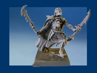 Death Elf Spear Regiment (10)