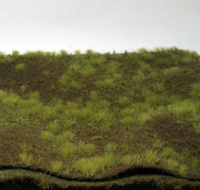 Waldboden bewachsen (Spätherbst)