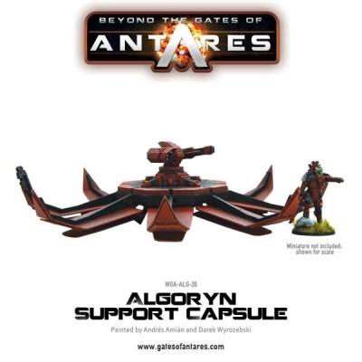 Algoryn Support Capsule