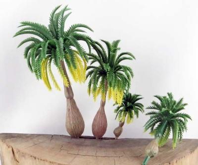 Palmen Variantion (4x3)