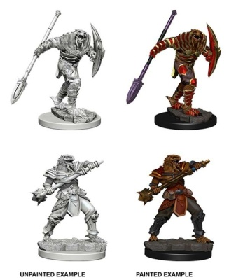 D&D: Dragonborn Male Fighter with Spear (2)