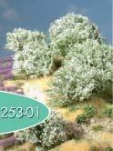 Rhododendron (weiß)